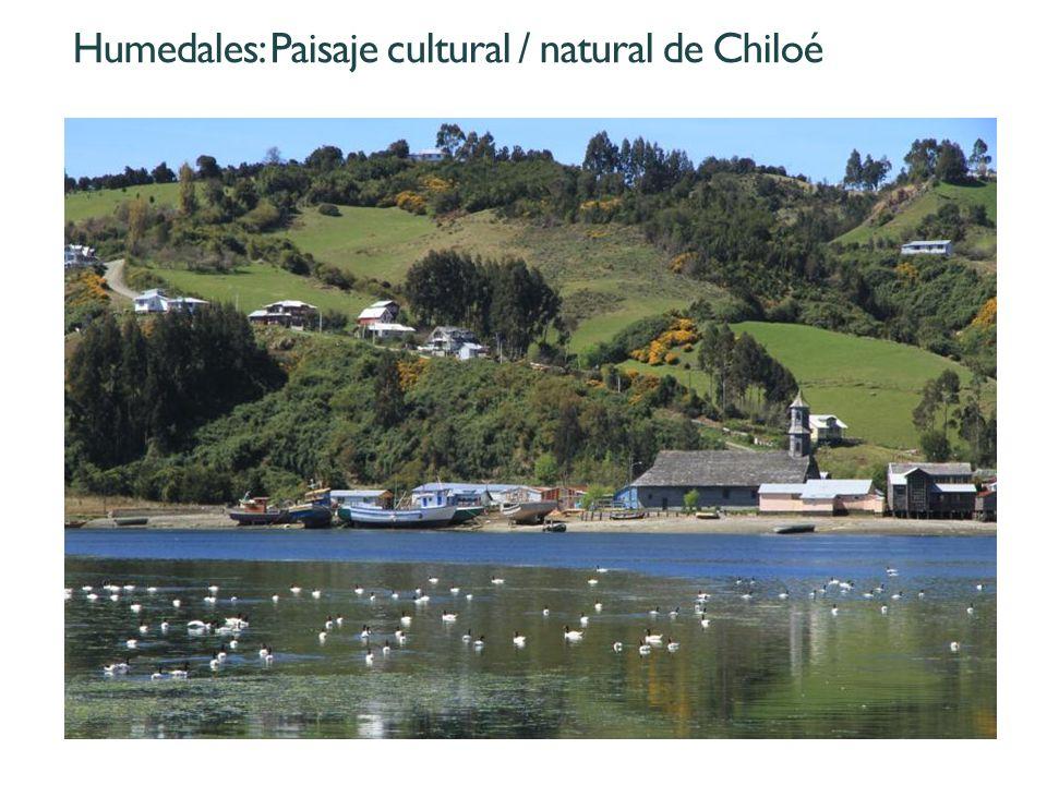 Humedales: Paisaje cultural / natural de Chiloé