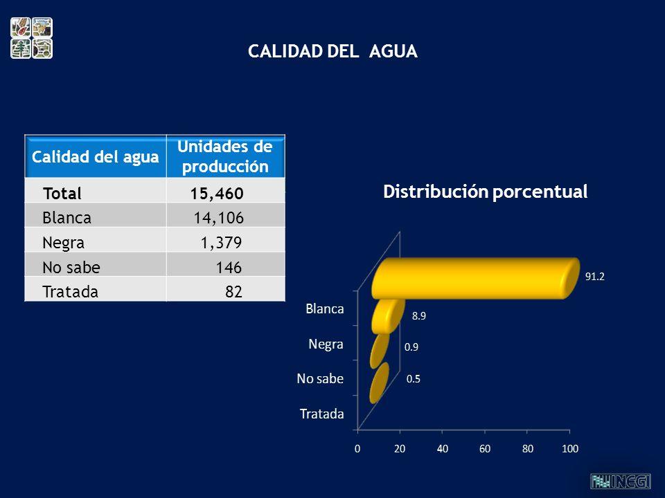 Distribución porcentual CALIDAD DEL AGUA Calidad del agua Unidades de producción Total15,460 Blanca 14,106 Negra 1,379 No sabe 146 Tratada 82