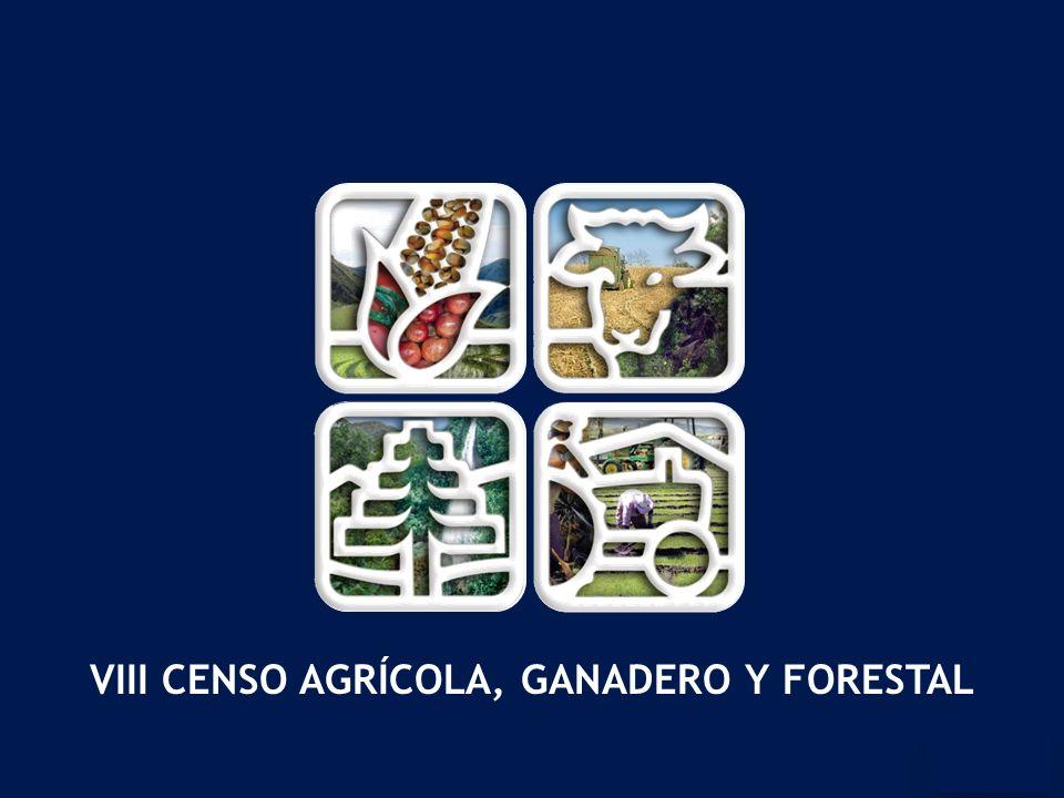 VIII CENSO AGRÍCOLA, GANADERO Y FORESTAL