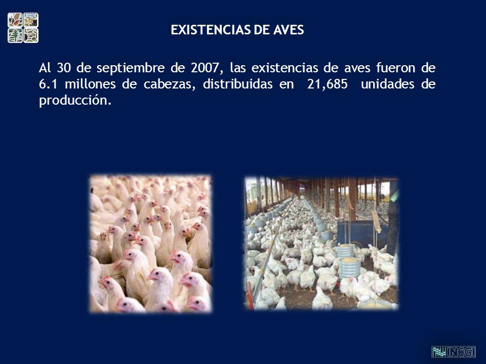 Al 30 de septiembre de 2007, las existencias de aves fueron de 6.1 millones de cabezas, distribuidas en 21,685 unidades de producción. EXISTENCIAS DE