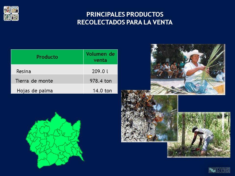 PRINCIPALES PRODUCTOS RECOLECTADOS PARA LA VENTA Producto Volumen de venta Resina 209.0 l Tierra de monte 978.4 ton Hojas de palma 14.0 ton