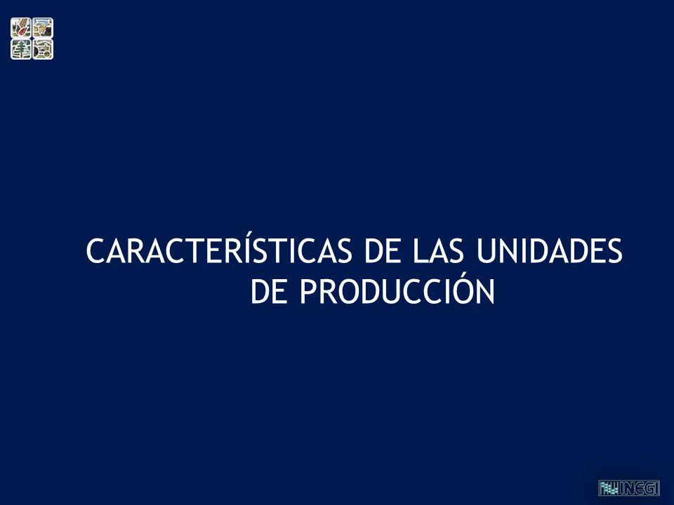 CARACTERÍSTICAS DE LAS UNIDADES DE PRODUCCIÓN