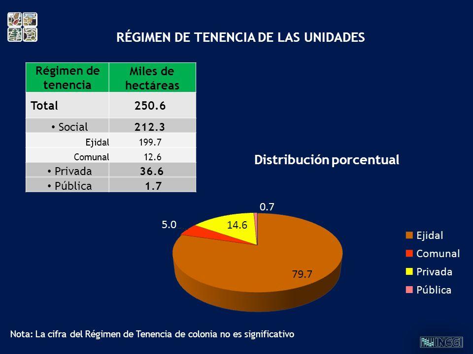 Régimen de tenencia Miles de hectáreas Total250.6 Social212.3 Ejidal199.7 Comunal 12.6 Privada 36.6 Pública 1.7 RÉGIMEN DE TENENCIA DE LAS UNIDADES Di