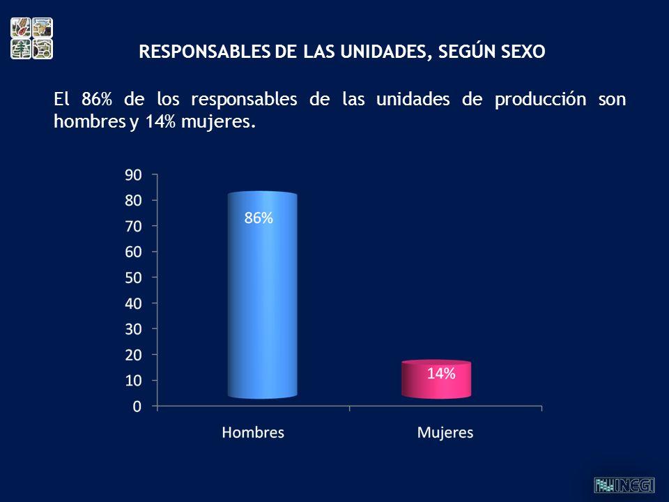 El 86% de los responsables de las unidades de producción son hombres y 14% mujeres. RESPONSABLES DE LAS UNIDADES, SEGÚN SEXO