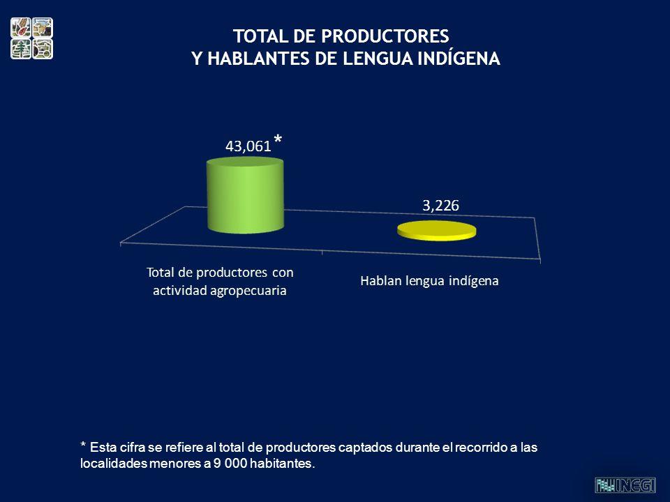 TOTAL DE PRODUCTORES Y HABLANTES DE LENGUA INDÍGENA * Esta cifra se refiere al total de productores captados durante el recorrido a las localidades me