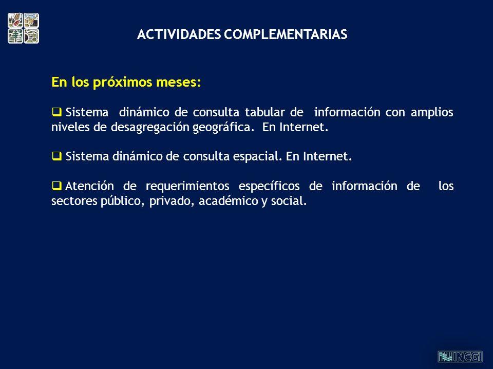 ACTIVIDADES COMPLEMENTARIAS En los próximos meses: Sistema dinámico de consulta tabular de información con amplios niveles de desagregación geográfica