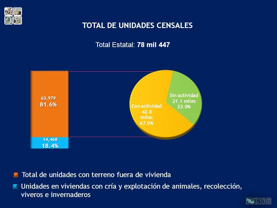 Total Estatal: 78 mil 447 63,97981.6% 14,46818.4% TOTAL DE UNIDADES CENSALES Total de unidades con terreno fuera de vivienda Unidades en viviendas con
