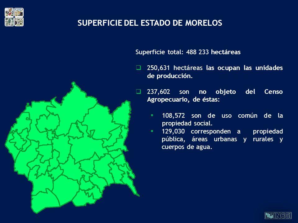 SUPERFICIE DEL ESTADO DE MORELOS Superficie total: 488 233 hectáreas 250,631 hectáreas las ocupan las unidades de producción. 237,602 son no objeto de
