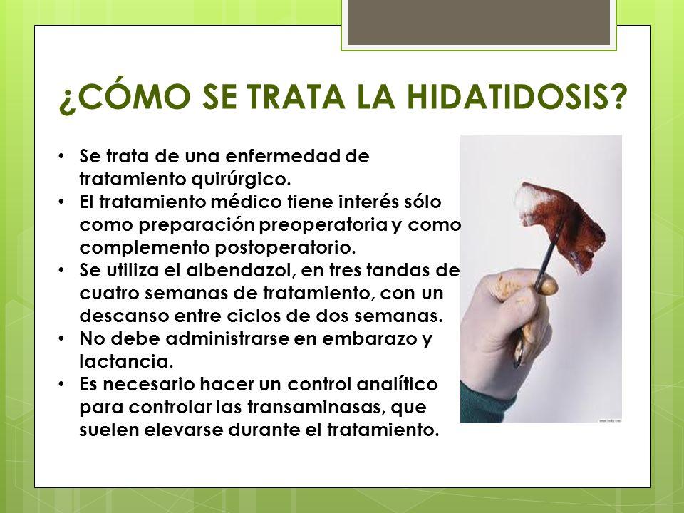 ¿CÓMO SE DIAGNOSTICA? El quiste hidatídico aparece de manera casual en estudios radiológicos o ecográficos. En pulmón, se manifiesta en la radiografía