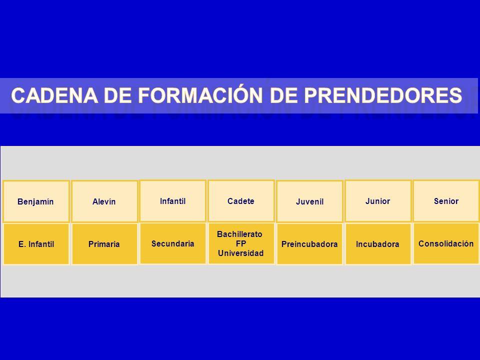 Primaria Secundaria Bachillerato FP Universidad Preincubadora Consolidación Alevín InfantilCadete Juvenil Senior Incubadora Junior E. Infantil Benjamí