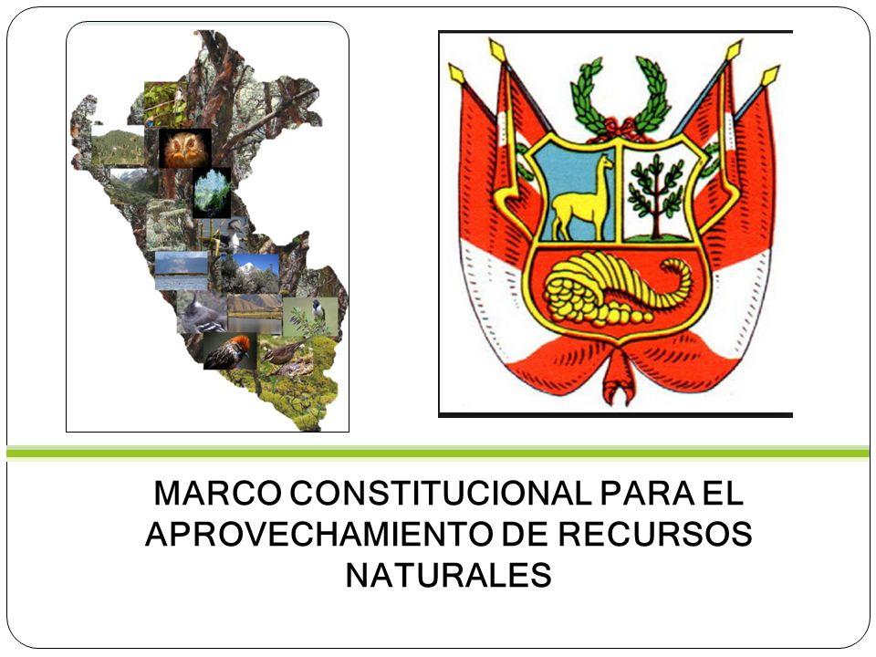 NORMA CONSTITUCIONALCONTENIDO Artículo 2, numeral 22Derecho al ambiente equilibrado y adecuado.