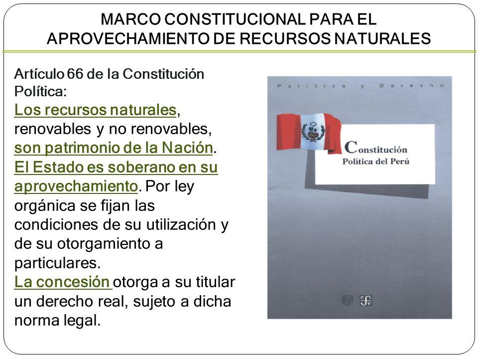 Artículo 66 de la Constitución Política: Los recursos naturales, renovables y no renovables, son patrimonio de la Nación. El Estado es soberano en su
