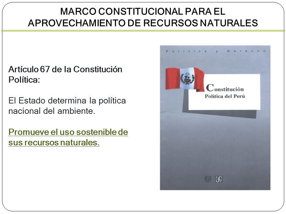 Artículo 67 de la Constitución Política: El Estado determina la política nacional del ambiente. Promueve el uso sostenible de sus recursos naturales.