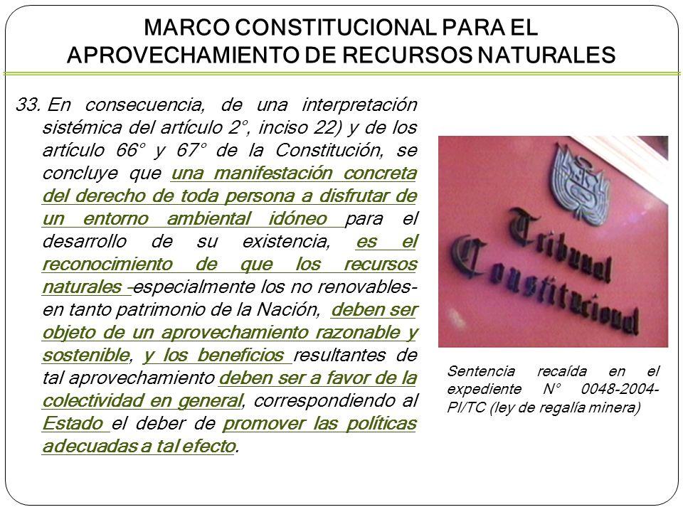 33. En consecuencia, de una interpretación sistémica del artículo 2°, inciso 22) y de los artículo 66° y 67° de la Constitución, se concluye que una m