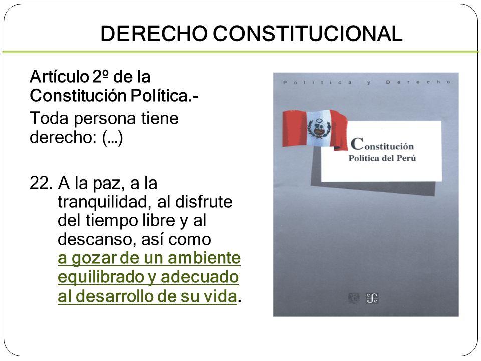 Artículo 2º de la Constitución Política.- Toda persona tiene derecho: (…) 22. A la paz, a la tranquilidad, al disfrute del tiempo libre y al descanso,