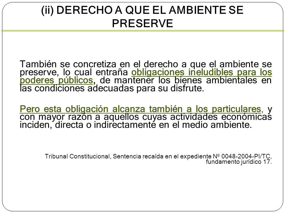 (ii) DERECHO A QUE EL AMBIENTE SE PRESERVE También se concretiza en el derecho a que el ambiente se preserve, lo cual entraña obligaciones ineludibles