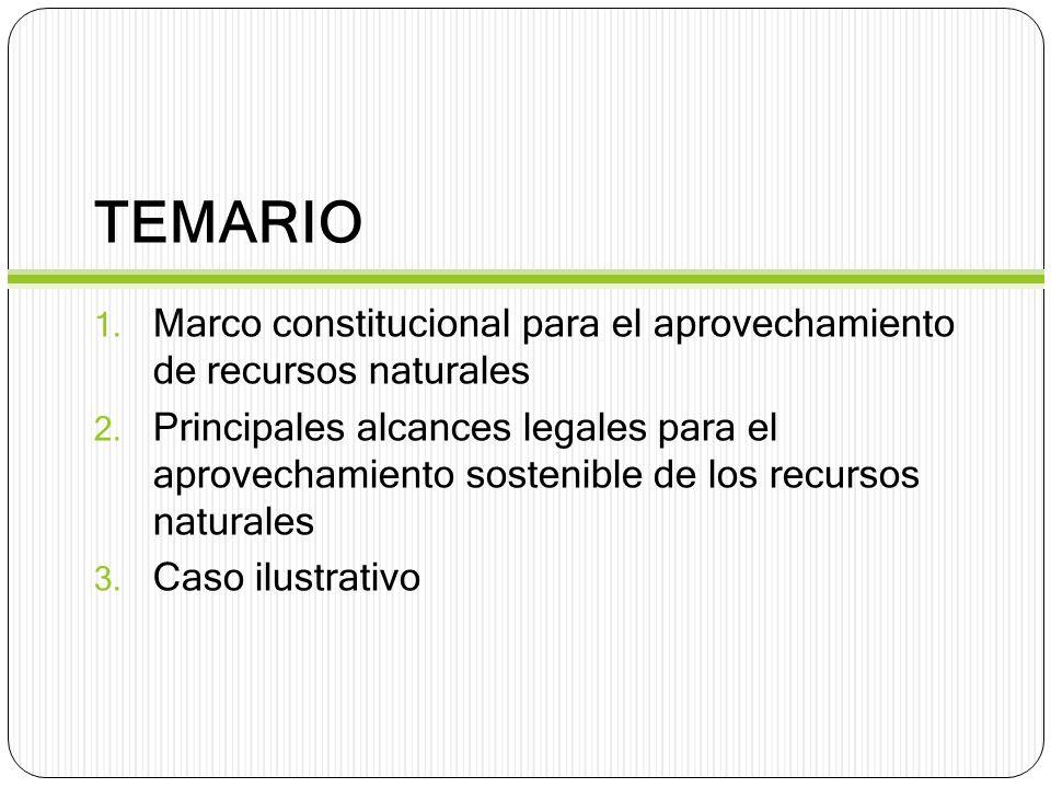 TEMARIO 1. Marco constitucional para el aprovechamiento de recursos naturales 2. Principales alcances legales para el aprovechamiento sostenible de lo