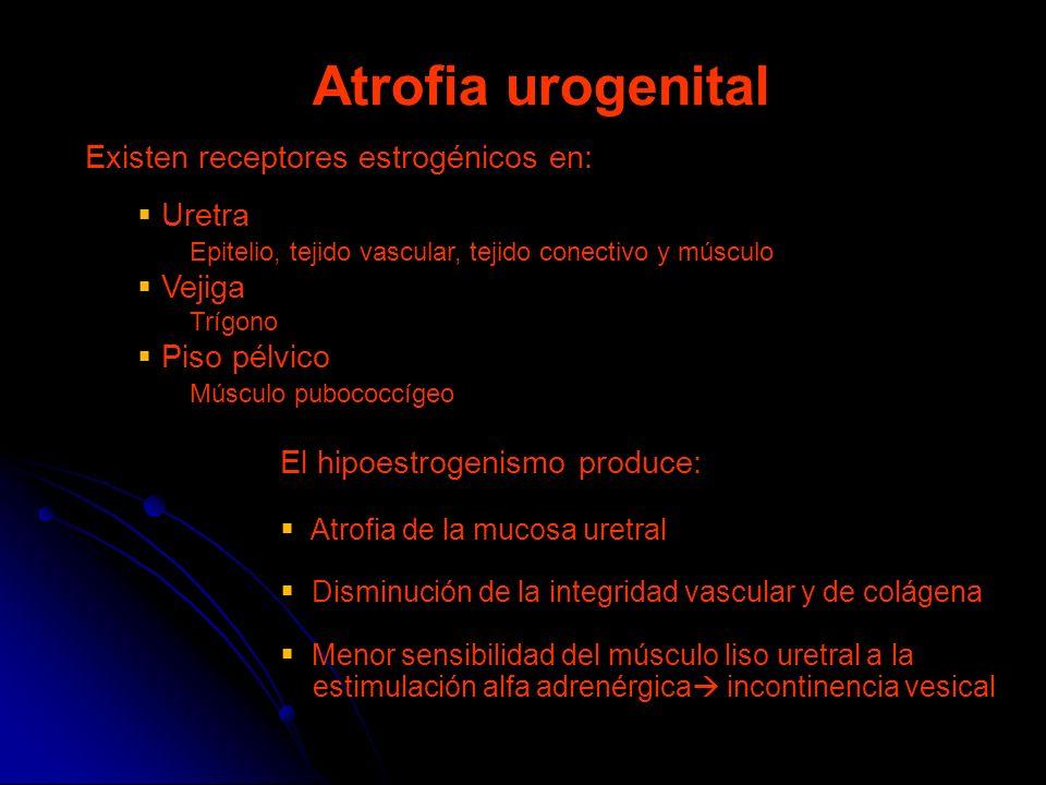 Atrofia urogenital Existen receptores estrogénicos en: Uretra Epitelio, tejido vascular, tejido conectivo y músculo Vejiga Trígono Piso pélvico Múscul