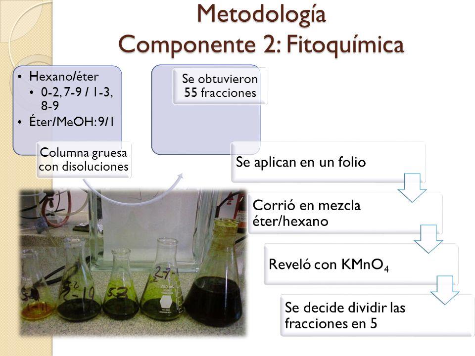 Metodología Componente 2: Fitoquímica Hexano/éter 0-2, 7-9 / 1-3, 8-9 Éter/MeOH: 9/1 Columna gruesa con disoluciones Se obtuvieron 55 fracciones Se ap