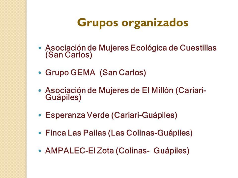 Grupos organizados Asociación de Mujeres Ecológica de Cuestillas (San Carlos) Grupo GEMA (San Carlos) Asociación de Mujeres de El Millón (Cariari- Guá