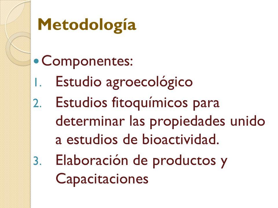 Componentes: 1. Estudio agroecológico 2. Estudios fitoquímicos para determinar las propiedades unido a estudios de bioactividad. 3. Elaboración de pro