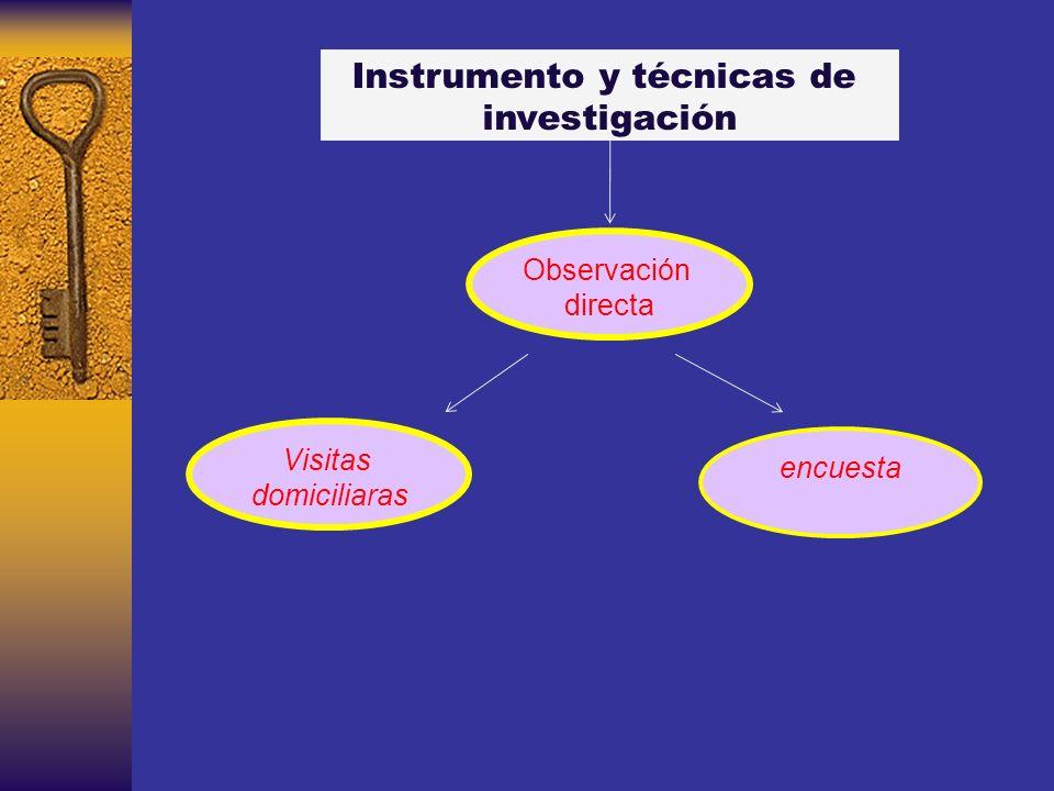 Instrumento y técnicas de investigación Observación directa encuesta Visitas domiciliaras