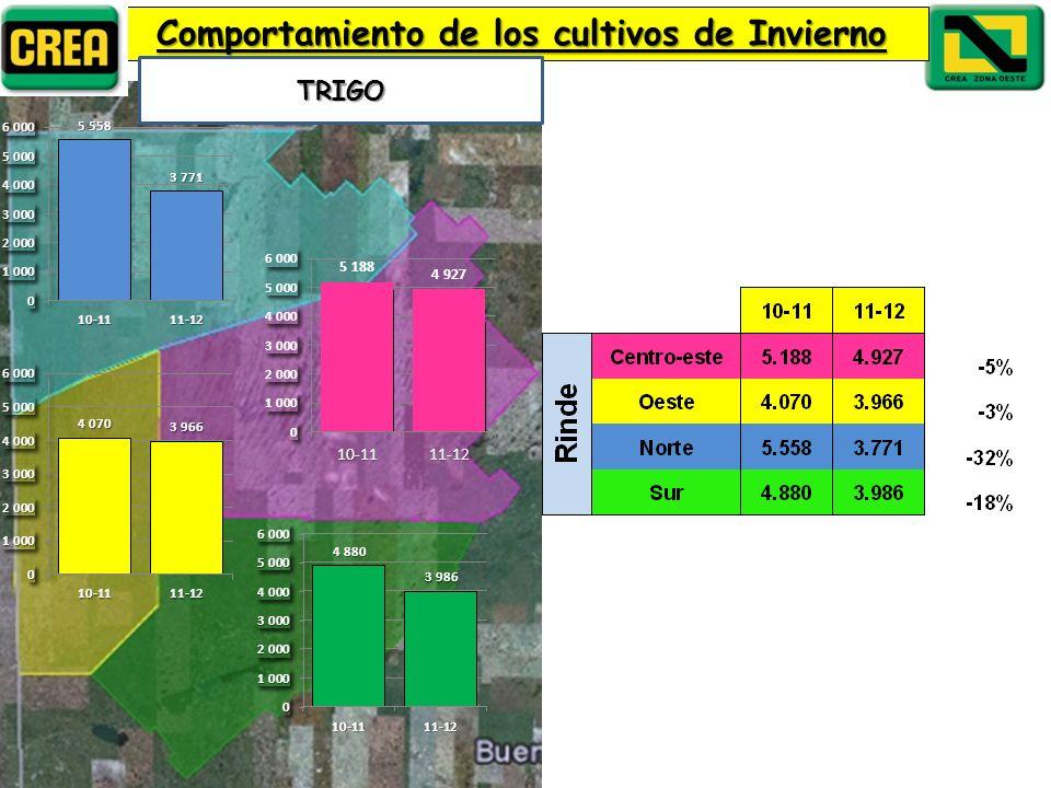 Comportamiento de los cultivos de Invierno TRIGO