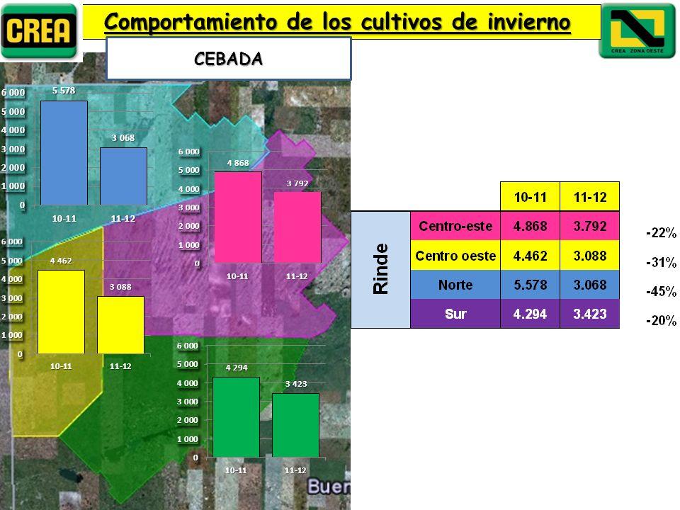 Comportamiento de los cultivos de invierno CEBADA