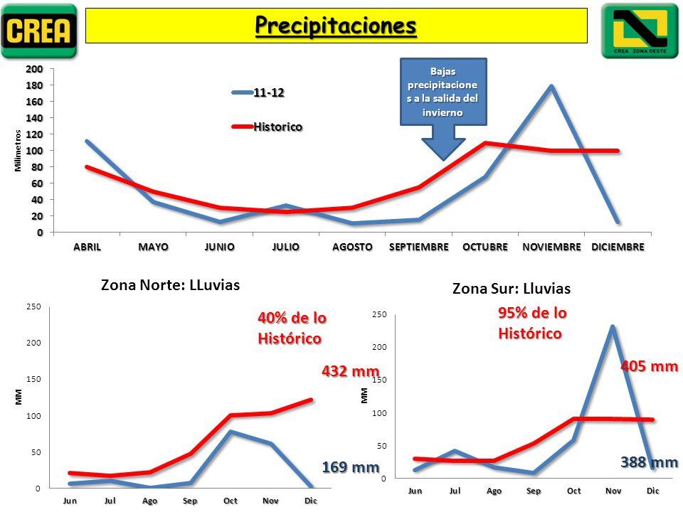 Precipitaciones Bajas precipitacione s a la salida del invierno 40% de lo Histórico 95% de lo Histórico 169 mm 432 mm 388 mm 405 mm