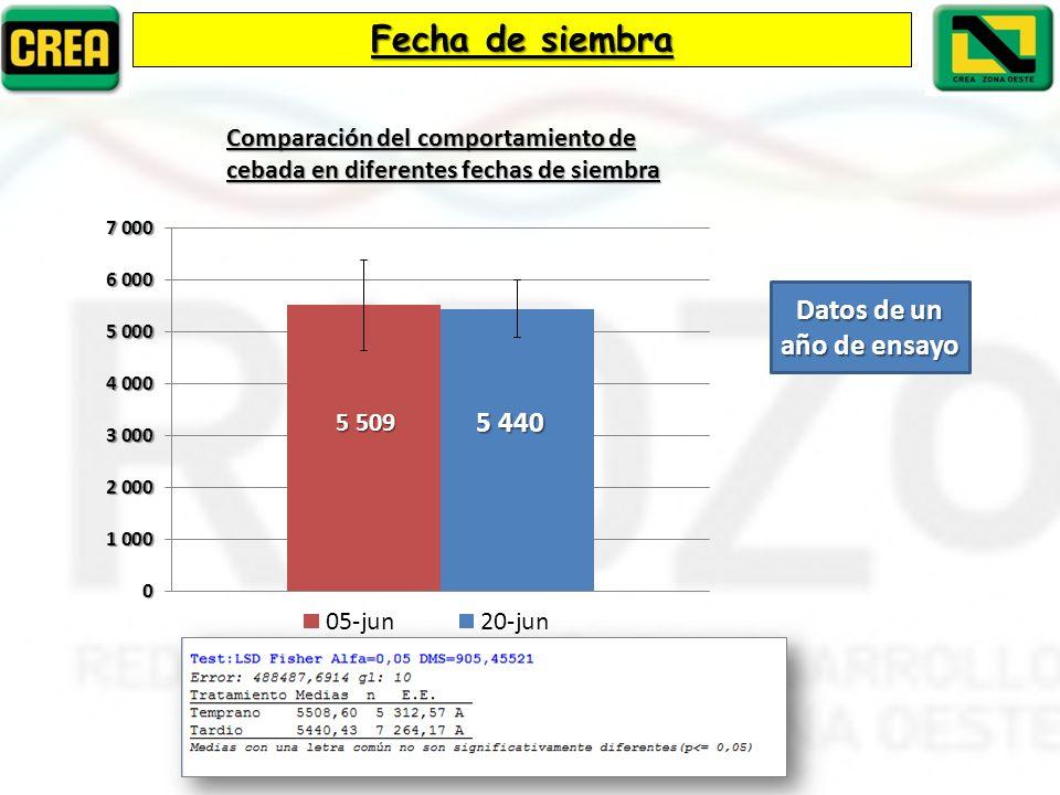 Fecha de siembra Comparación del comportamiento de cebada en diferentes fechas de siembra Datos de un año de ensayo