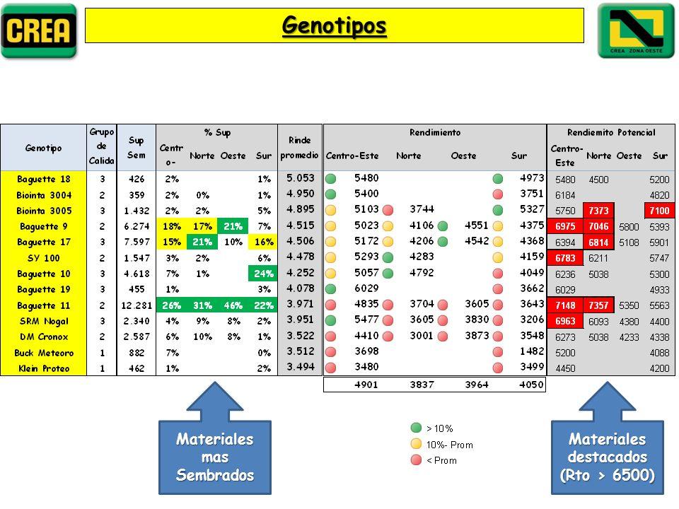 Genotipos Materiales destacados (Rto > 6500) Materiales mas Sembrados