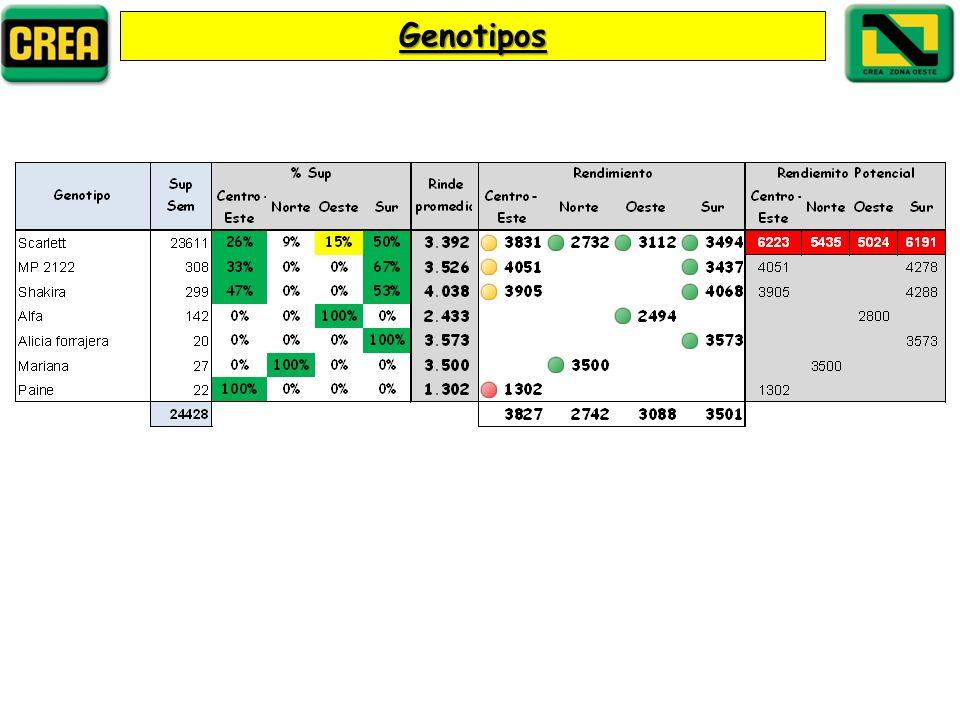 Genotipos