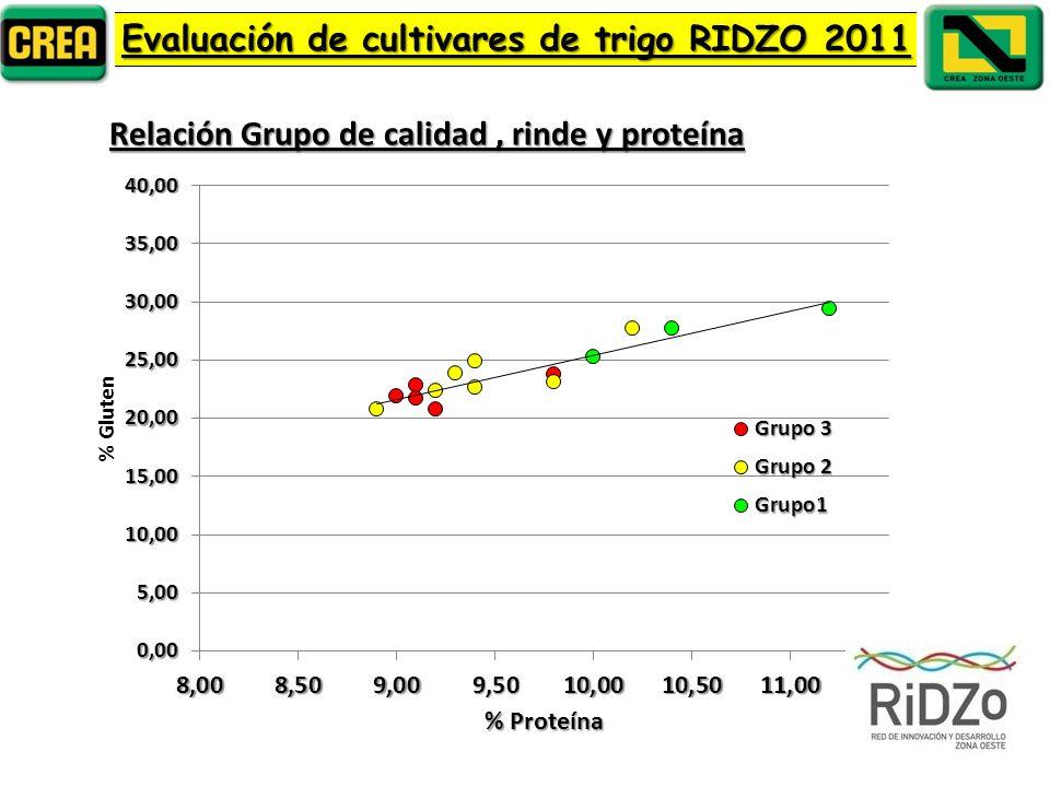 Relación Grupo de calidad, rinde y proteína