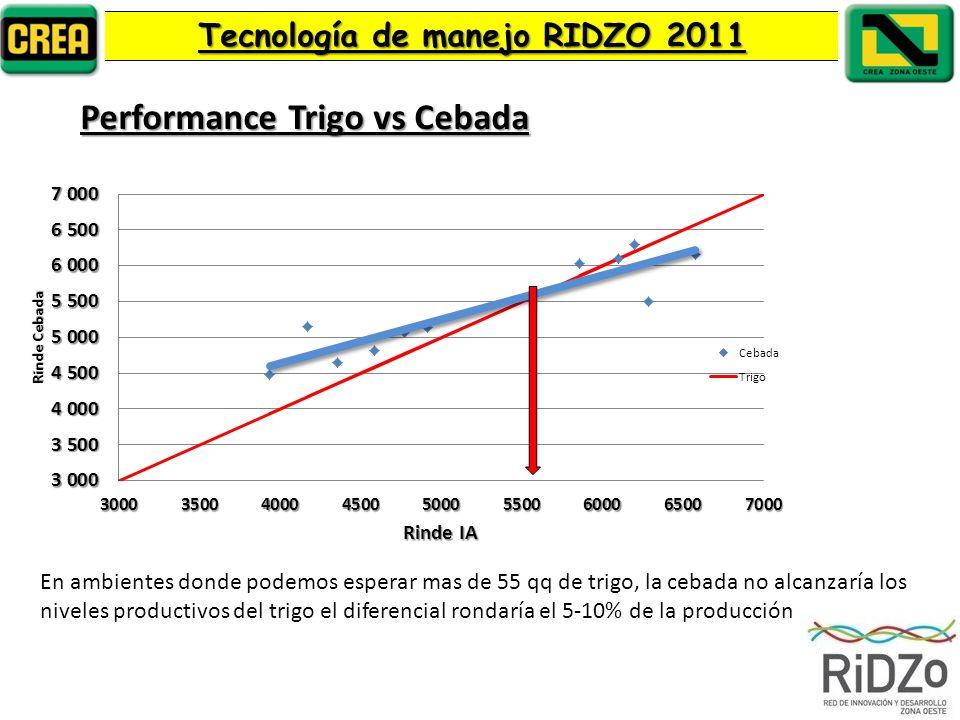 Performance Trigo vs Cebada Tecnología de manejo RIDZO 2011 En ambientes donde podemos esperar mas de 55 qq de trigo, la cebada no alcanzaría los niveles productivos del trigo el diferencial rondaría el 5-10% de la producción