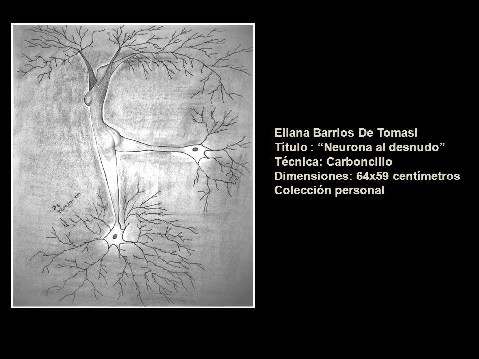 Título : Neurona al desnudo Técnica: Carboncillo Dimensiones: 64x59 centímetros Colección personal
