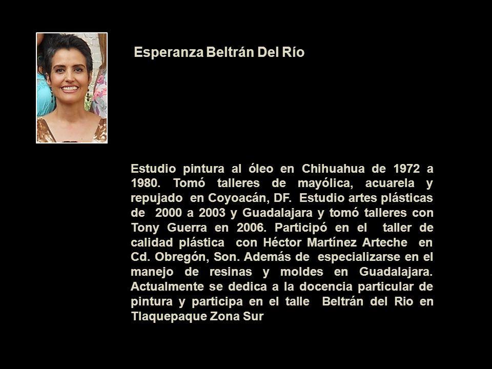 Esperanza Beltrán Del Río Estudio pintura al óleo en Chihuahua de 1972 a 1980. Tomó talleres de mayólica, acuarela y repujado en Coyoacán, DF. Estudio