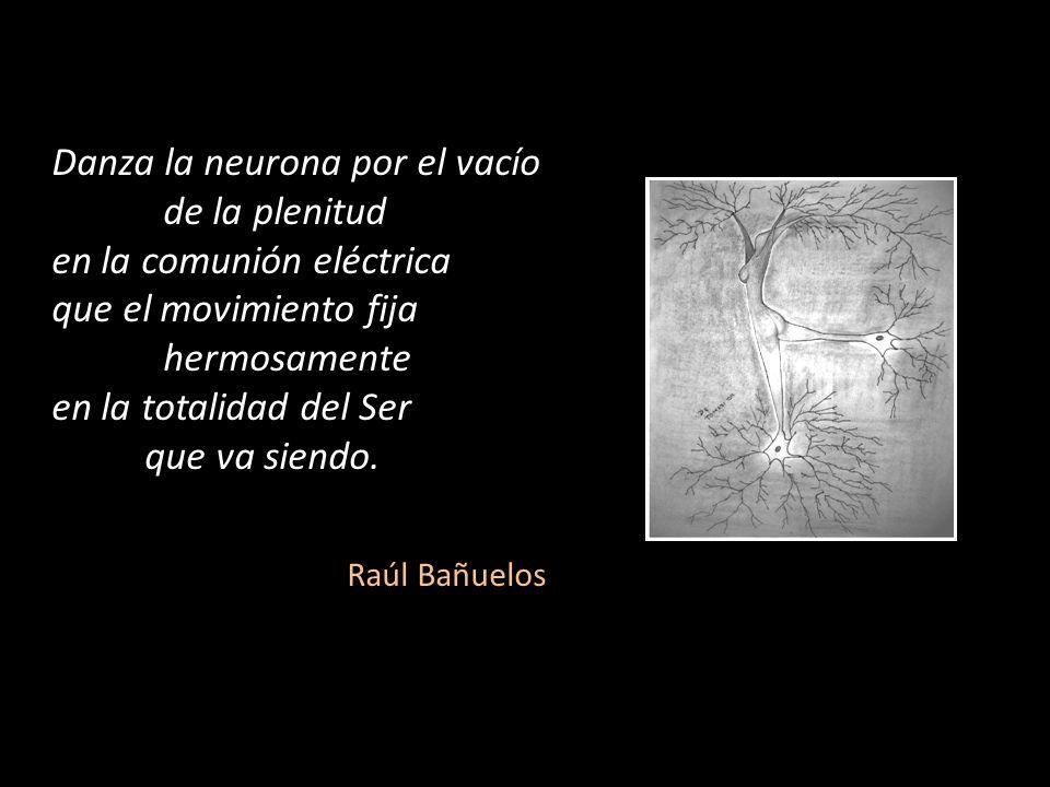 Danza la neurona por el vacío de la plenitud en la comunión eléctrica que el movimiento fija hermosamente en la totalidad del Ser que va siendo. Raúl