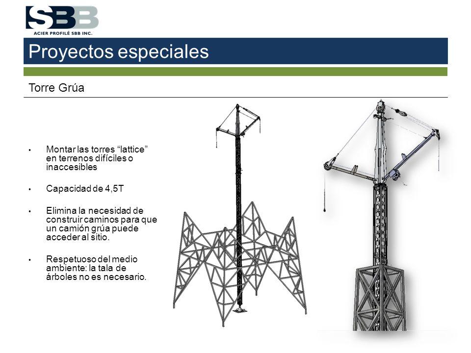 Proyectos especiales Torre Grúa Montar las torres lattice en terrenos difíciles o inaccesibles Capacidad de 4,5T Elimina la necesidad de construir cam
