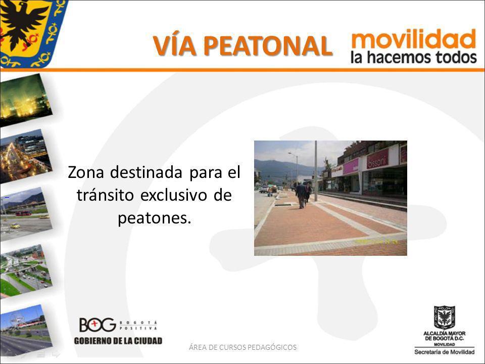 VÍA PEATONAL Zona destinada para el tránsito exclusivo de peatones. ÁREA DE CURSOS PEDAGÓGICOS