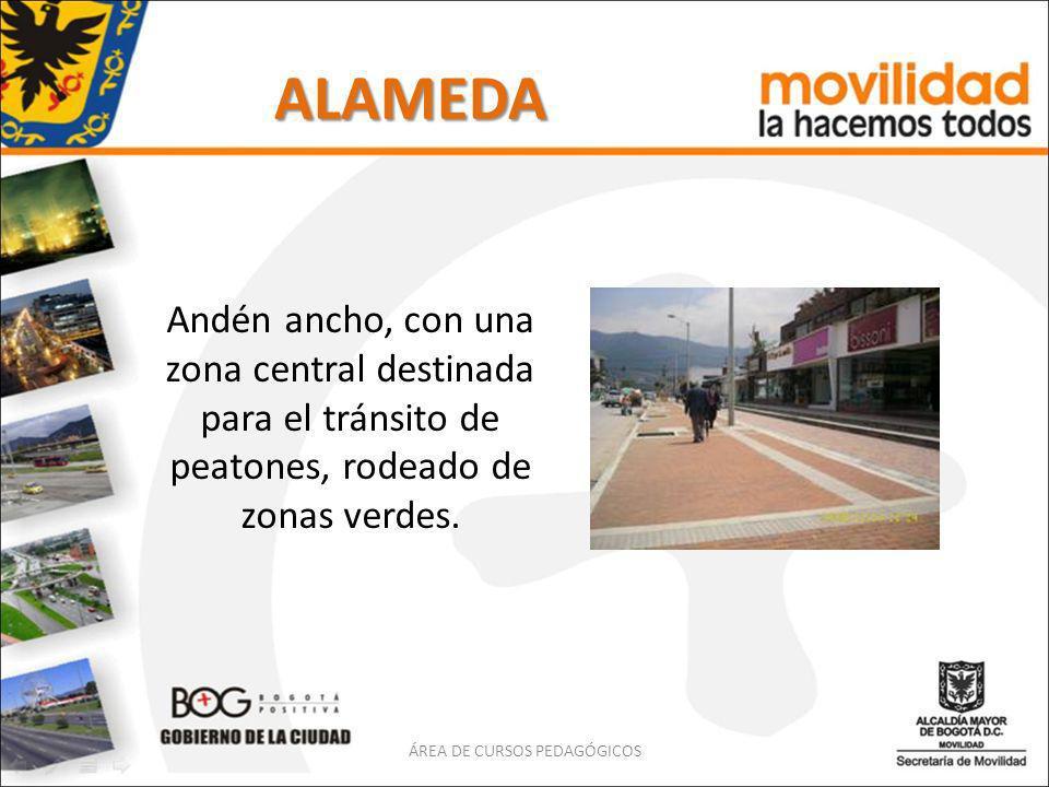 ALAMEDA Andén ancho, con una zona central destinada para el tránsito de peatones, rodeado de zonas verdes. ÁREA DE CURSOS PEDAGÓGICOS