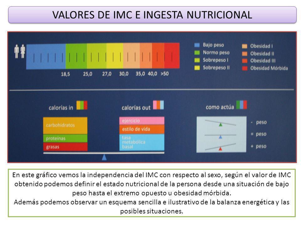 VALORES DE IMC E INGESTA NUTRICIONAL En este gráfico vemos la independencia del IMC con respecto al sexo, según el valor de IMC obtenido podemos definir el estado nutricional de la persona desde una situación de bajo peso hasta el extremo opuesto u obesidad mórbida.