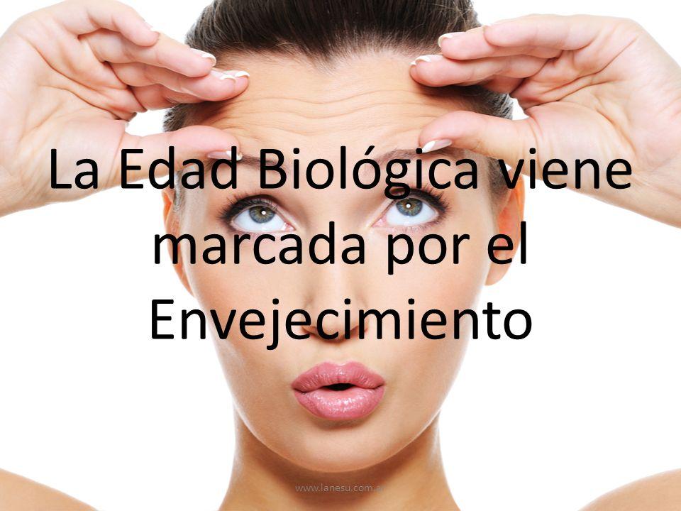 La Edad Biológica viene marcada por el Envejecimiento www.lanesu.com.ar
