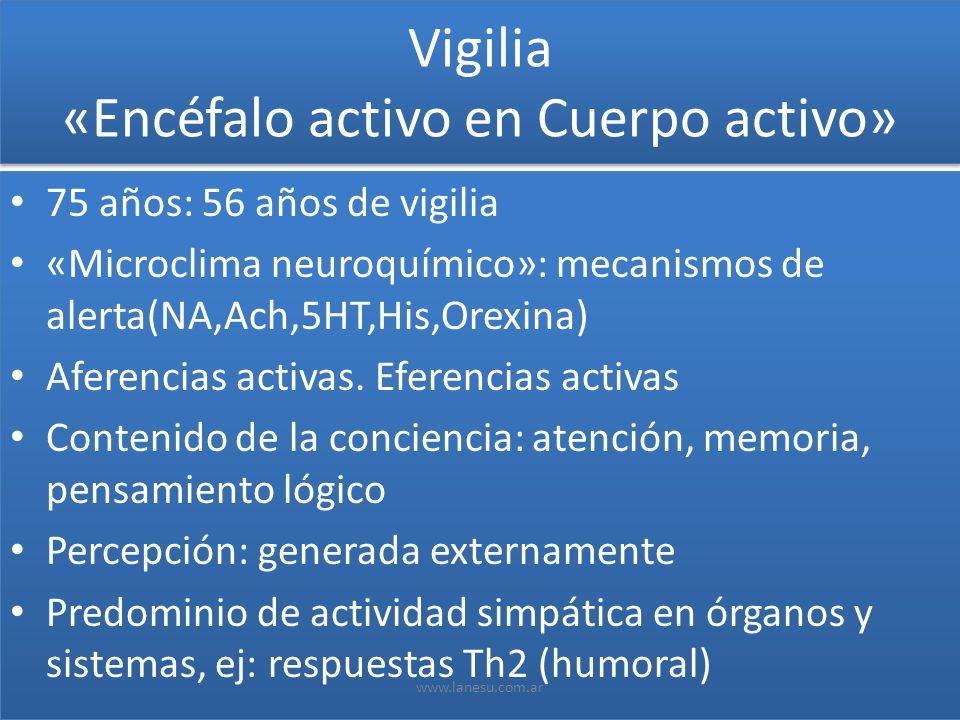 Vigilia «Encéfalo activo en Cuerpo activo» 75 años: 56 años de vigilia «Microclima neuroquímico»: mecanismos de alerta(NA,Ach,5HT,His,Orexina) Aferenc