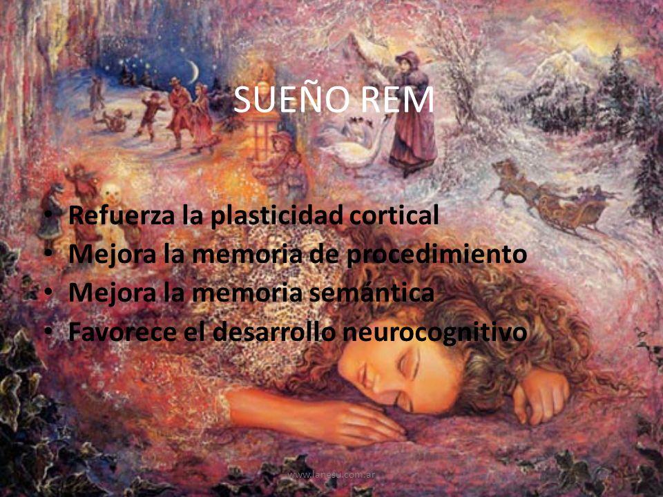SUEÑO REM Refuerza la plasticidad cortical Mejora la memoria de procedimiento Mejora la memoria semántica Favorece el desarrollo neurocognitivo www.la