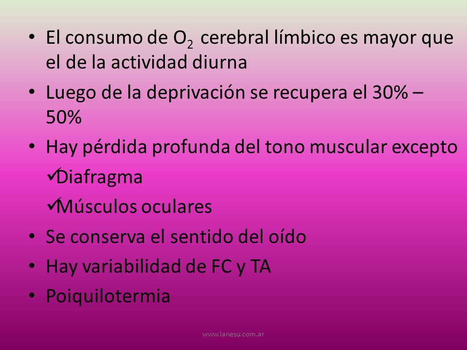 El consumo de O 2 cerebral límbico es mayor que el de la actividad diurna Luego de la deprivación se recupera el 30% – 50% Hay pérdida profunda del to