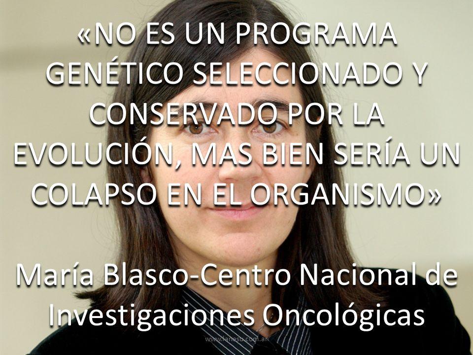 «NO ES UN PROGRAMA GENÉTICO SELECCIONADO Y CONSERVADO POR LA EVOLUCIÓN, MAS BIEN SERÍA UN COLAPSO EN EL ORGANISMO» María Blasco-Centro Nacional de Inv