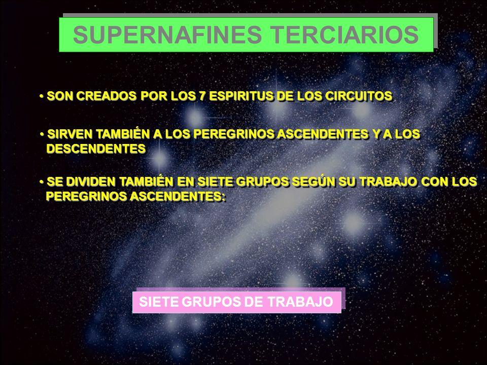 SUPERNAFINES TERCIARIOS SON CREADOS POR LOS 7 ESPIRITUS DE LOS CIRCUITOS SON CREADOS POR LOS 7 ESPIRITUS DE LOS CIRCUITOS SIRVEN TAMBIÉN A LOS PEREGRI