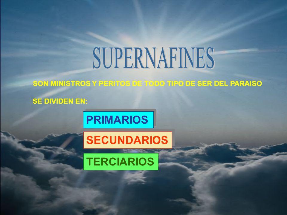 SON MINISTROS Y PERITOS DE TODO TIPO DE SER DEL PARAISO SE DIVIDEN EN: PRIMARIOS SECUNDARIOS TERCIARIOS