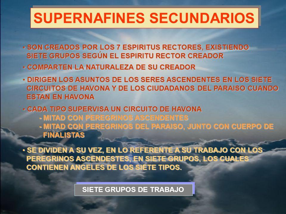 -SUPERNAFINES SECUNDARIOS- SIETE GRUPOS DE TRABAJO -SUPERNAFINES SECUNDARIOS- 1.