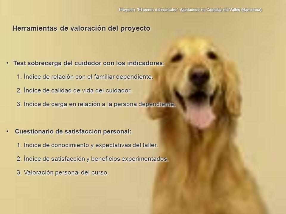 Proyecto: El recreo del cuidador. Ajuntament de Castellar del Vallés (Barcelona) Test sobrecarga del cuidador con los indicadores:Test sobrecarga del
